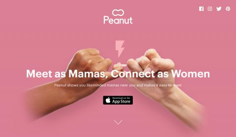 Website Peanut