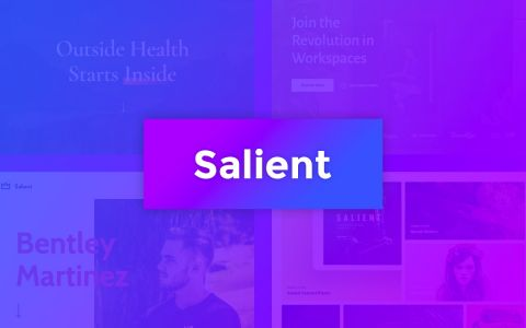 Salient - Responsive WordPress template voor creatives